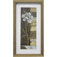 Quadro Floral I Kapos Natural 34X19Cm Com Vidro