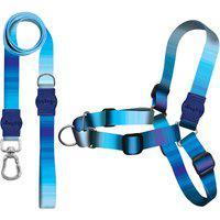Kit Guia + Peitoral Antipuxão Premium Dog Trip Brasil Maldives Azul