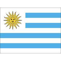 Bandeira Seleção Uruguai - Mundial 2018