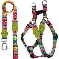 Kit Guia Premium + Peitoral Americano Keramas Dog Trip Brasil Colorido