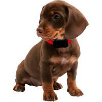 Coleira De Adestramento Sit Lite Ideal Para Adestrar Seu Cão De Peq.