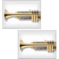 Jogo Americano Colours Creative Photo Decor - Trompete - 2 Peças