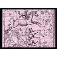 Quadro Decorativo Com Moldura Astrology Rosa E Preto (24X33)