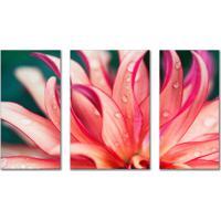Kit Quadros Decorativos Flores Rosa