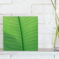 Quadro - Green Leaf