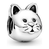 Charm Gato