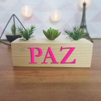 Cubo Decorativo Com Suculenta E Letras Em Acrílico Paz