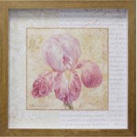 Quadro Caixa Flor Violeta Natural 33X33 Cm Kapos
