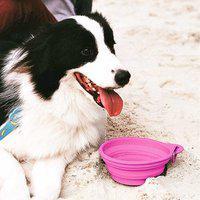 Comedouro Retrátil Para Pets Travel Bowl