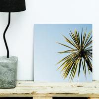 Placa Decorativa - Tropical Plant