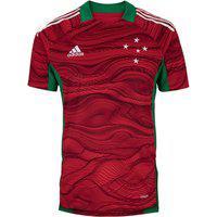Camisa De Goleiro Do Cruzeiro I 21 Adidas - Masculina