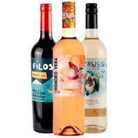 Vinho Rose Vegano Honoro Vera Tempranillo/Sirah + Vinho Tinto Filosur Malbec + Vinho Branco Intruso