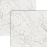 Porcelanato Bianco Gioia Polido 120X120Cm - Biancogres - Biancogres