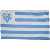 Bandeira Paysandu