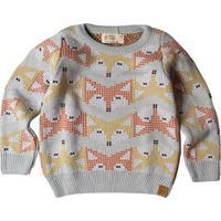 Suéter Infantil Tricô Fox Masculino - Masculino-Azul