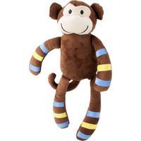 Macaco Menino Momo Cortex