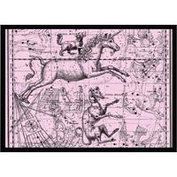 Quadro Decorativo Com Moldura Astrology Rosa E Preto (32X45)