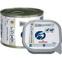 Ração Royal Canin Veterinary Diet Wet Recovery 195G