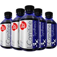 Kit 5X L-Carnitine Synthesis 250 Ml - Midway - Unissex