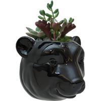 Vaso De Parede Cachepot Urso Cerâmica