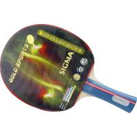 Raquete Sigma Treino 3 Stars - Gold Sports
