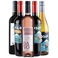 Vinho Rose Davo Seco+Vinho Tinto Lauca Wines Carmenere+Vinho Tinto Malbec+Vinho Tinto Cabernet+Vinho Branco Chardonnay