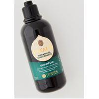 Amaro Feminino L'Occitane Au Brésil Shampoo Patauá - 250Ml, Hidratação Equilibrante