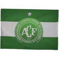 Bandeira Chapecoense Escudo